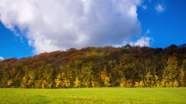 autumn landscape - time lapse - deciduous stock videos & royalty-free footage