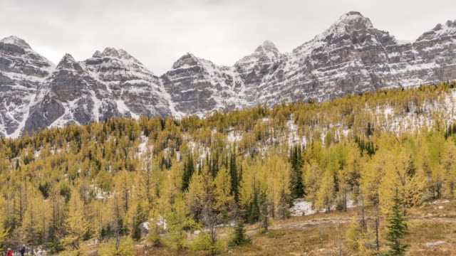 autumn larch valley - valley of the ten peaks stock videos and b-roll footage