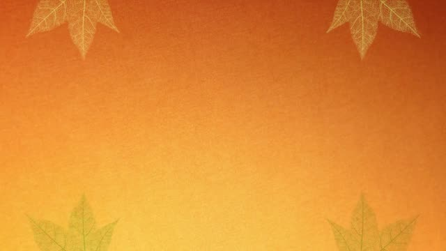 autumn leaf is an animated video . depicted artistically in a kaleidoscope style. decorative pattern like backgrounds can be used for text or on its own. - pinecone stock videos & royalty-free footage