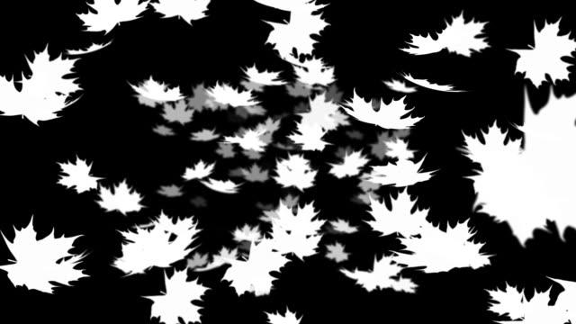 Autumn leafs falling  loopable alpha matte