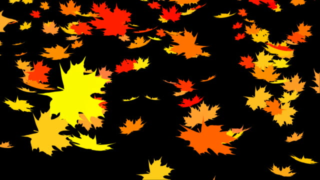 autumn leafs falling - maple leaf stock videos and b-roll footage