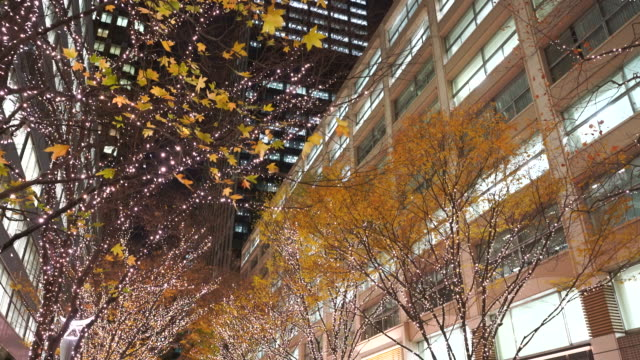 Autumn leaves are slightly left on Illuminated rows of trees for Christmas season, which shake and fall by winter wind at Marunouchi Naka-Dori Street at Marunouchi Chiyoda Tokyo Japan on Dec. 12 2017. Marunouchi district skyscrapers can be seen behind.