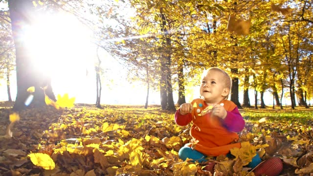 slo mo autumn leaves falling over baby girl - one baby girl only stock videos & royalty-free footage