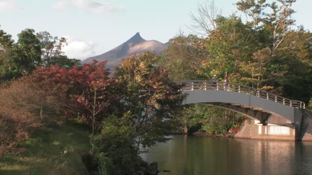Autumn leaves in the Onuma National Quasi-National Park