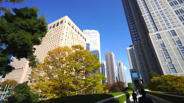 autumn leaves trees stand at front of the tokyo metropolitan government building and other high-rise buildings at shinjuku subcenter nishi-shinjuku, tokyo japan on november 24 2017. - 政府の建物点の映像素材/bロール