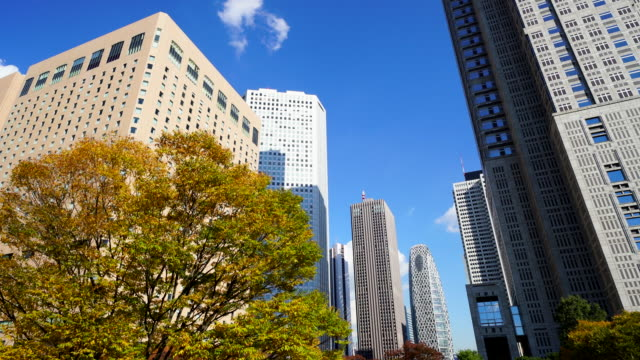 Autumn leaves trees stand at front of The Tokyo Metropolitan Government Building and other high-rise buildings at Shinjuku Subcenter Nishi-Shinjuku, Tokyo Japan on November 24 2017.