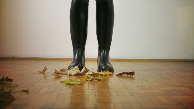 autumn leaves - flooring stock videos & royalty-free footage