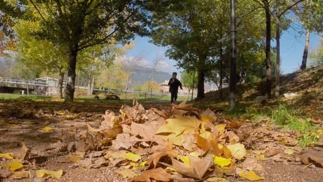 stockvideo's en b-roll-footage met autumn leaves - alleen jongens
