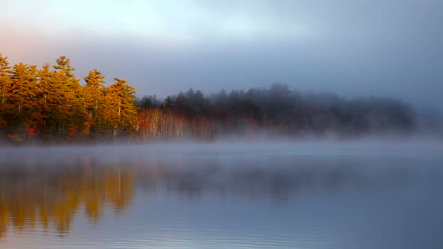 autumn light - new hampshire stock videos & royalty-free footage
