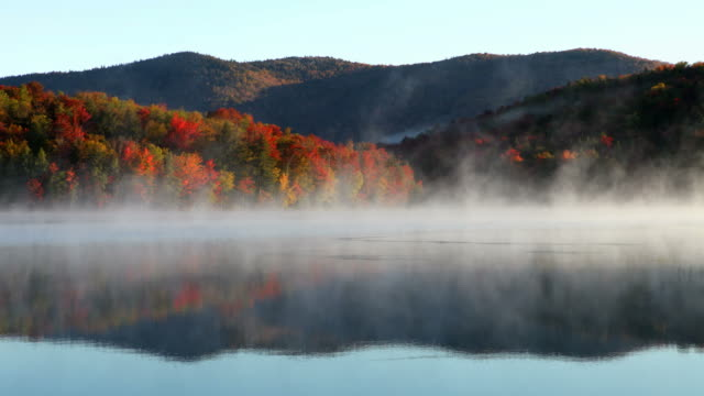 autumn mist in the green mountains of vermont - vermont stock videos & royalty-free footage