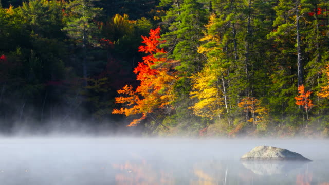 Autumn mist on a small pond in New Hampshire