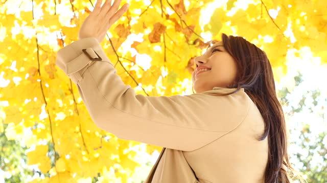vídeos y material grabado en eventos de stock de autumn mood - young woman enjoying autumn under tree in park - sólo mujeres jóvenes
