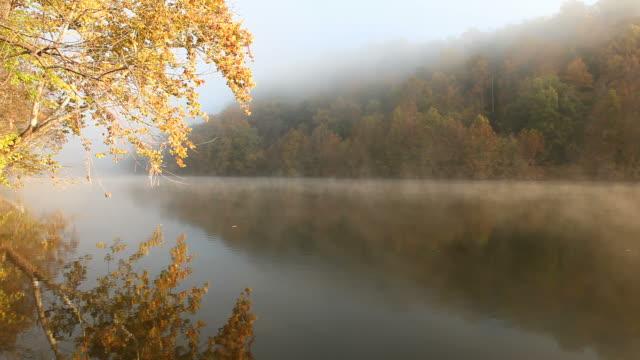 秋の朝 - バージニア州点の映像素材/bロール