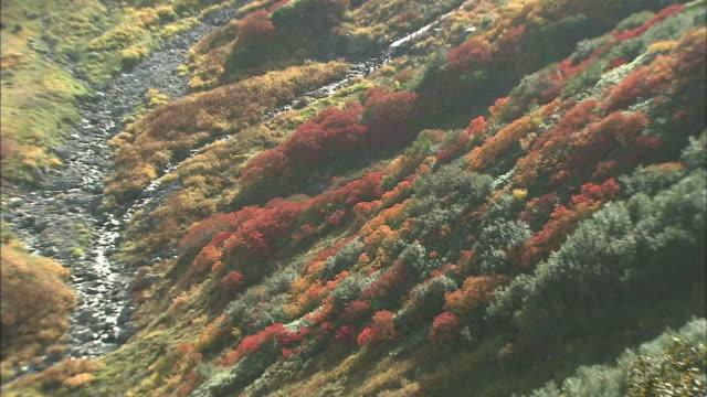 autumn mountain landscape - satoyama scenery stock videos & royalty-free footage