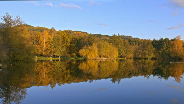 vidéos et rushes de autumn nature and lake - vincent pommeyrol