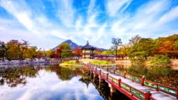 Autumn of Gyeongbokgung Palace in Seoul City,South Korea.Timelapse 4k