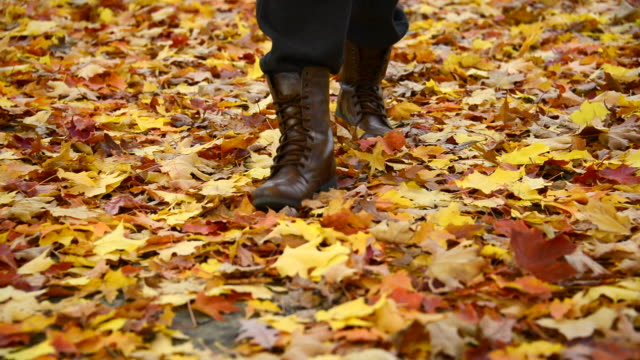 Autumn or Fall Colours: person walking over the fallen orange leaves of the maple tree.