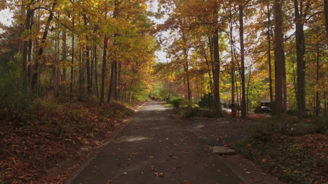 autumn ride in virginia - mid atlantic usa stock videos and b-roll footage