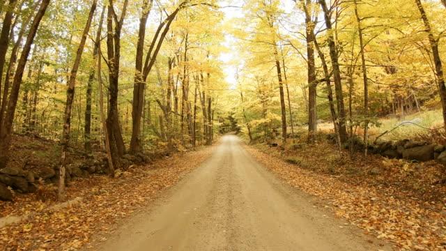 herbststraße in der lake sunapee region new hampshire - von bäumen gesäumt stock-videos und b-roll-filmmaterial