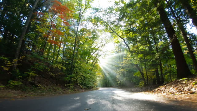 autumn road in the white mountains of new hampshire - le quattro stagioni video stock e b–roll