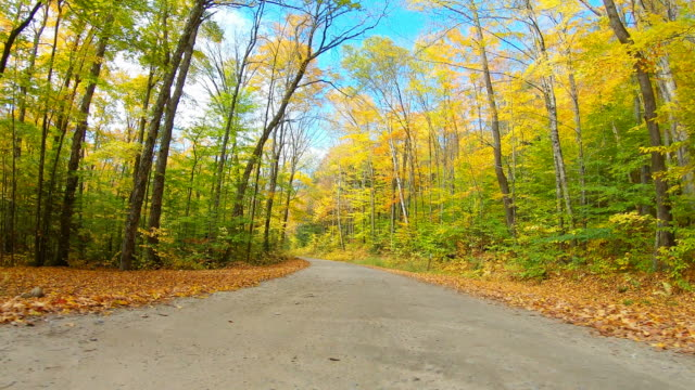 autumn road in the white mountains of new hampshire - mountain road stock videos & royalty-free footage