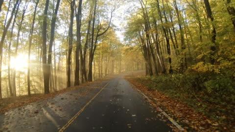 autumn road on mount greylock - massachusetts stock videos & royalty-free footage