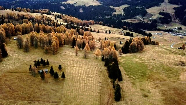autumn scene in south tyrol - seiser alm - seiser alm stock videos & royalty-free footage