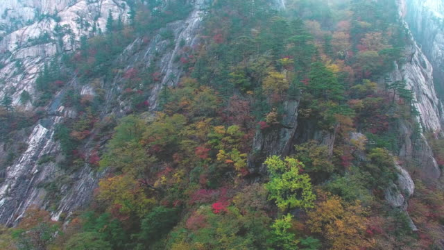vídeos de stock, filmes e b-roll de autumn scenery of rocks in seoraksan mountain / gangwon-do, south korea - ponto de referência natural