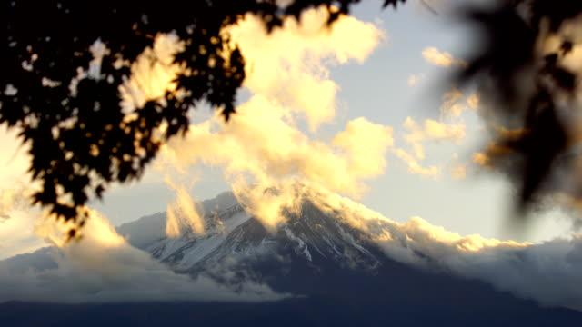 autumn season and mountain fuji with red leaves maple at lake kawaguchiko - november stock videos & royalty-free footage