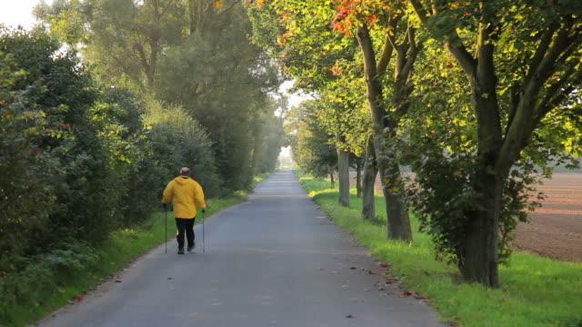 CRANE DOWN: Autumn Stroll