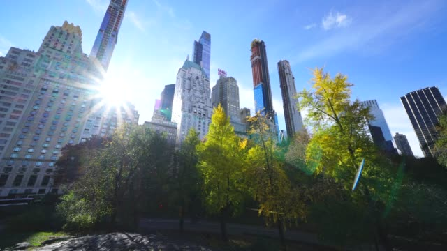 autumn sun illuminates the autumn color trees in the central park from over the midtown manhattan skyscraper at central park trees at new york ny usa on nov. 14 2018. - マンハッタン セントラルパーク点の映像素材/bロール
