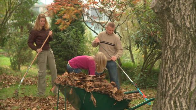 vídeos de stock e filmes b-roll de carrinho de hd: tempo de outono - ancinho equipamento de jardinagem