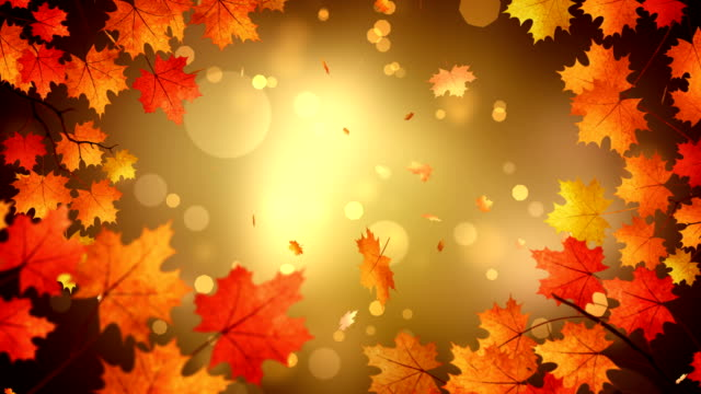 autumn title background - stock video - leaf stock videos & royalty-free footage