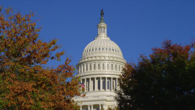 autumn trees surround the dome of the united states capitol in washington, d.c. - 新古典派点の映像素材/bロール