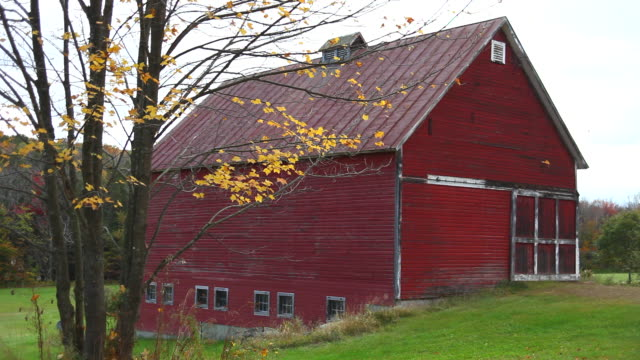 autumn - barn stock videos & royalty-free footage