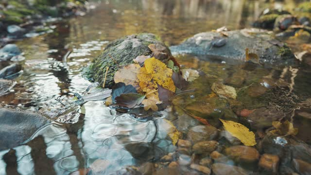 autumn - named wilderness area stock videos & royalty-free footage