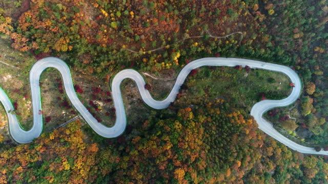 vídeos de stock, filmes e b-roll de autumn view of songnisan maltijae recreational forest - squiggle