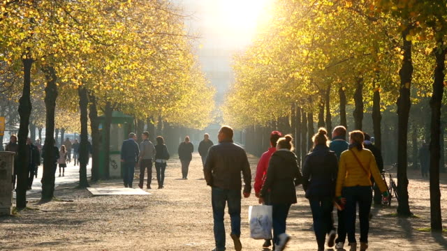 autumn with people and sunlight - zona pedonale strada transitabile video stock e b–roll
