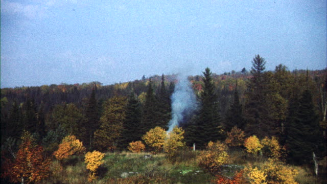 MS Autumn woods to small column of smoke ( seen from forest rangers tower) / Canada