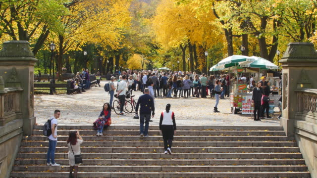 tu autumnal fallen leaves are fluttering down over the people at the mall, which are surrounded by rows of autumnal color trees.people walk on the stair of bethesda terrace. - concession stand stock videos and b-roll footage