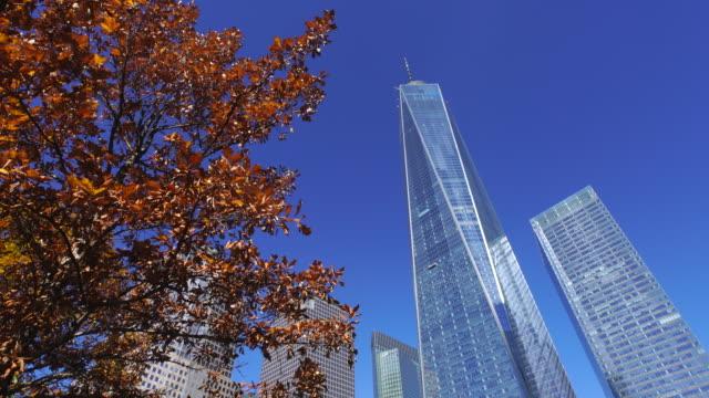 autumnal leaves tree stands beside skyscrapers at 9/11 memorial. - ローアングル点の映像素材/bロール