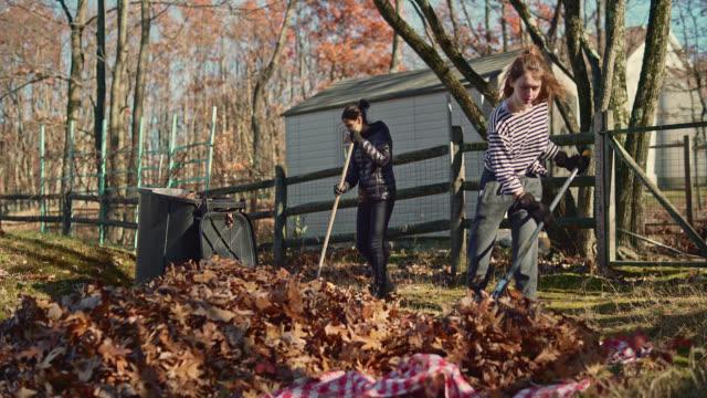 vídeos de stock e filmes b-roll de autumn's cleanup on the backyard. two sisters, teenager girls, raking up fallen leaves together for removal. - ancinho equipamento de jardinagem