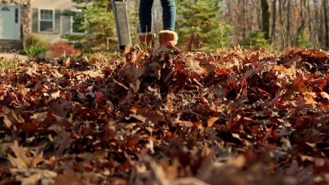 vídeos de stock e filmes b-roll de autumn's cleanup. teenager girl removing fallen leaves with leaf blower - ancinho equipamento de jardinagem
