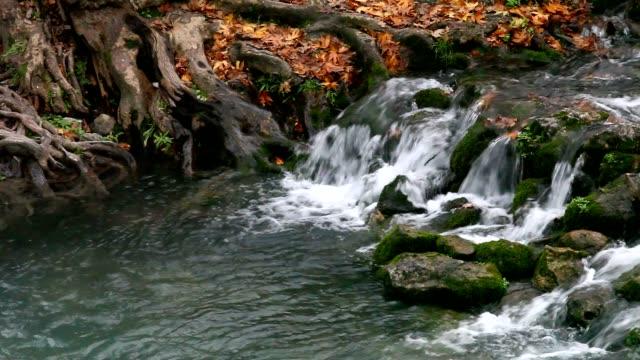 Herbst-kleinen Wasserfall