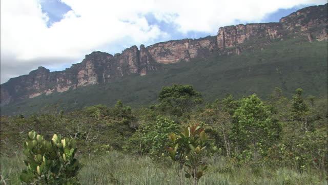 vídeos y material grabado en eventos de stock de auyantepui in guiana highlands - punto de referencia natural