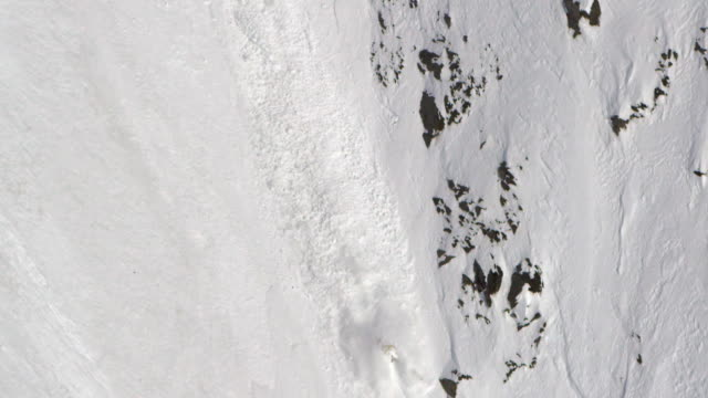 Avalanche in Alaska