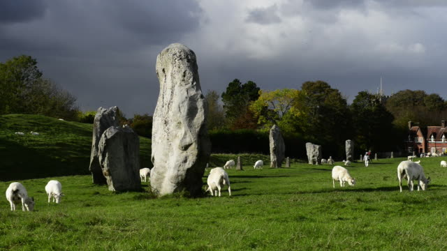 vídeos de stock e filmes b-roll de avebury prehistoric stone circle. - mamífero ungulado