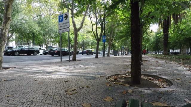 阿維尼達·利伯達德在里斯本 - liberdade 個影片檔及 b 捲影像