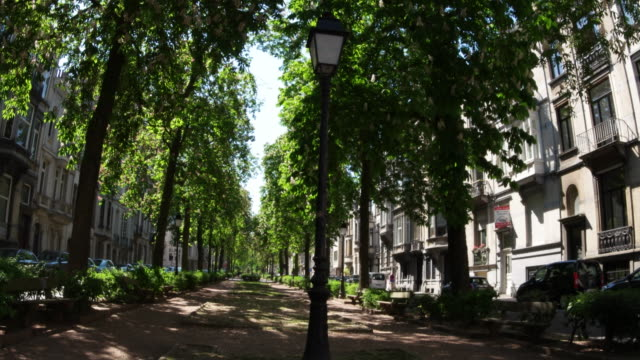 avenue louis lepoutre during lockdown few people in the street and no traffic leaves of trees swaying on breeze against blue sky april 2020 brussels - tranquil scene stock videos & royalty-free footage