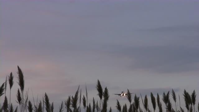 Aviation. Series of airplane landings, take-offs, runways. Detroit airport, Michigan.